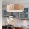ELK Lighting Modern Organics Drum Pendant